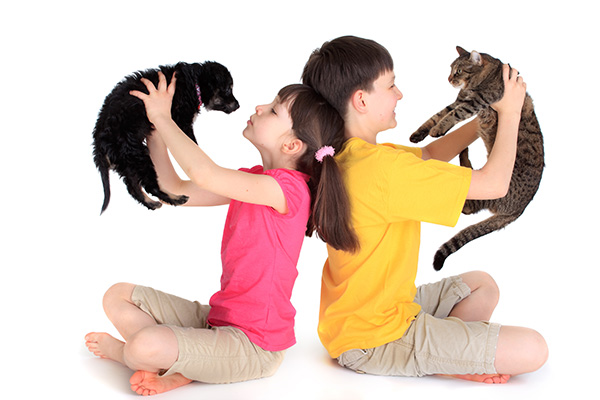 Best pets for families