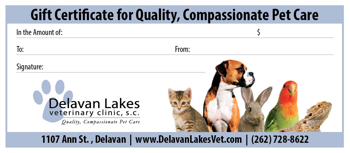 Gift Certificate for Quality, Compassionate Pet Care