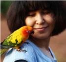 Bird Owners